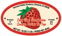 success stem label